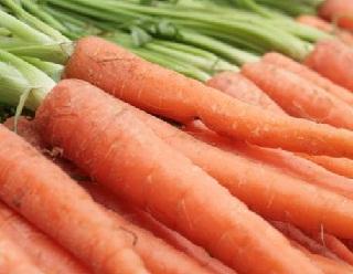 Вирощування моркви