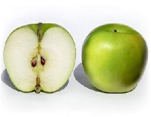 Шкідники яблуні - обробка