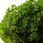Вирощування зелені.
