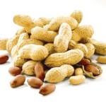 Як посадити арахіс?