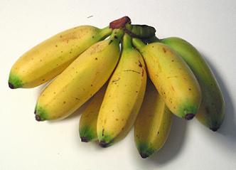 Як виростити банани в домашніх умовах?