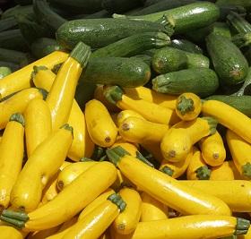 Вирощування кабачків