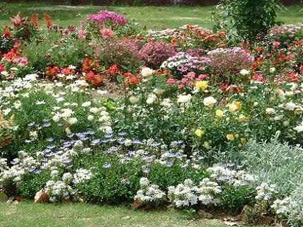 Ландшафтний дизайн з квітів