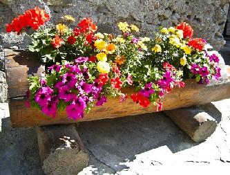 Гарний дизайн із квітів.