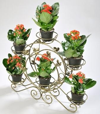 Розміщення кімнатних рослин на спеціальних підставках