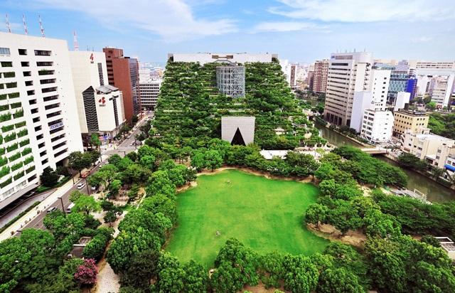 Красивий ландшафтний дизайн архітектури із різних рослин.