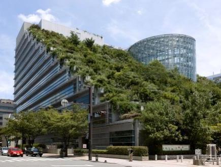 Ландшафтний дизайн архітектури із рослин