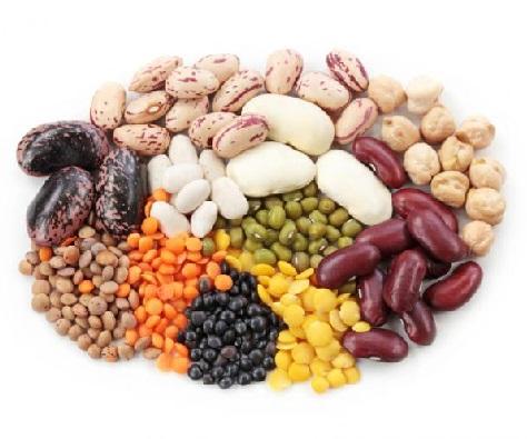 Зберігання насіння - умови і правила