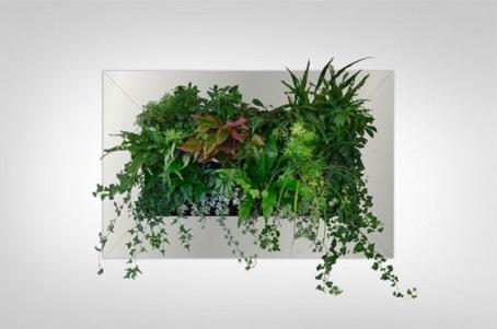 Настінні клумби для офісного приміщення, зелень і квіти у дизайні.