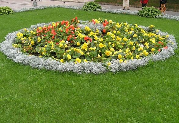 Газони і клумби, їх поєднання у дизайні саду