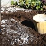 Вапнування кислих ґрунтів.