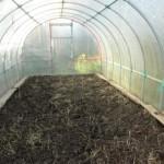 Весняні роботи в теплиці по підготовці ґрунту