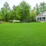 Догляд за газоном влітку - скошування, підживлення, поливання