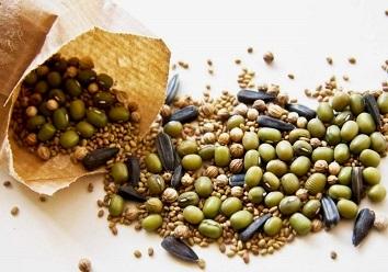 Прогрівання і замочування насіння перед посівом