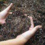 Власноручне приготування ґрунту для розсади.